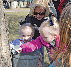 Maple Sugaring Spring Fever