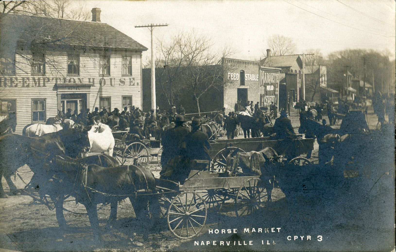 Horse Market Day postcard