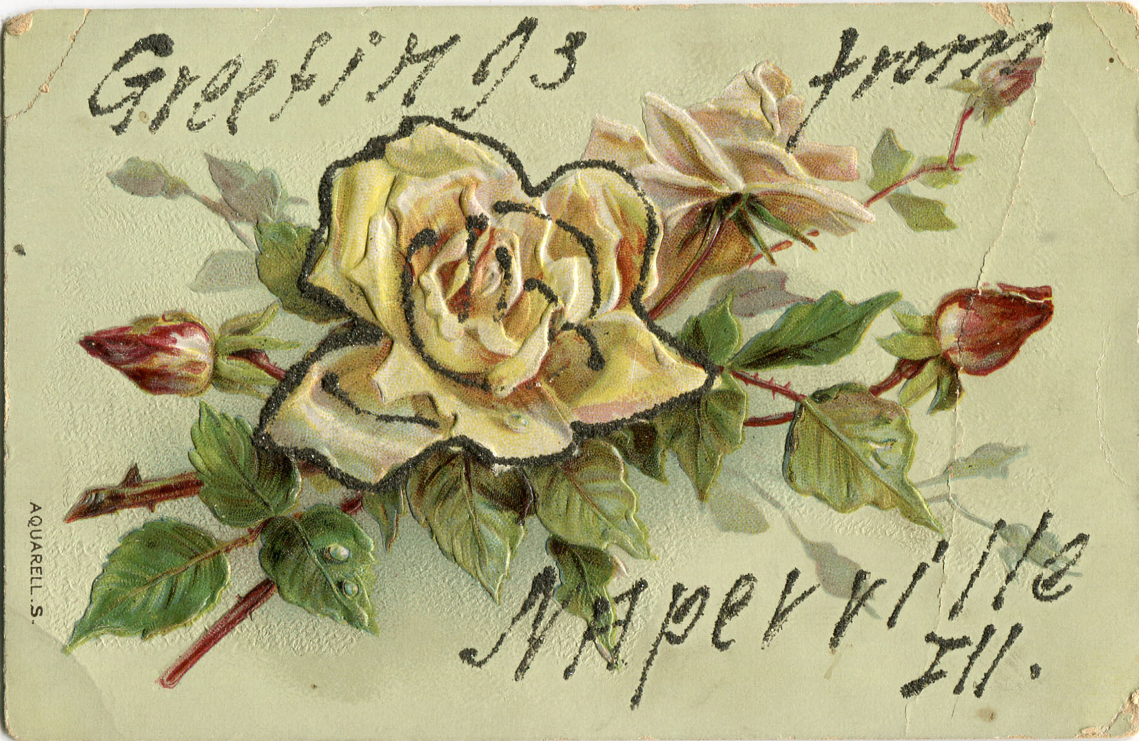 Postcard with embossed roses