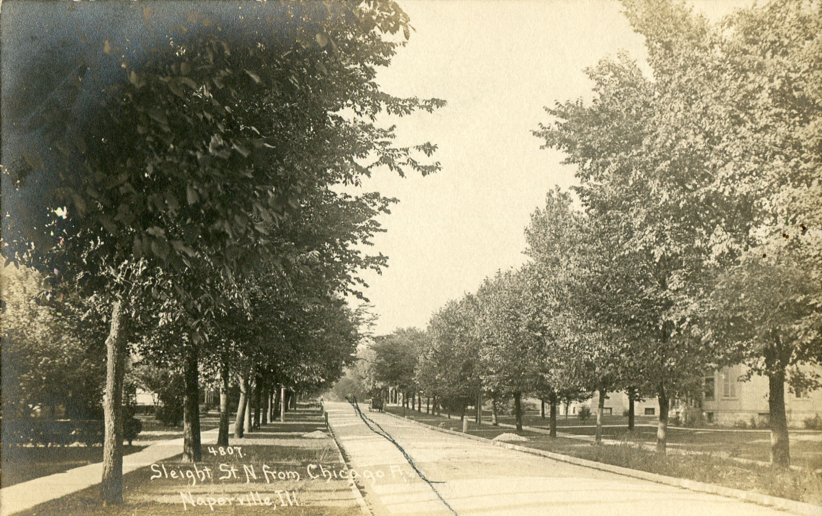 Postcard view of Sleight Street